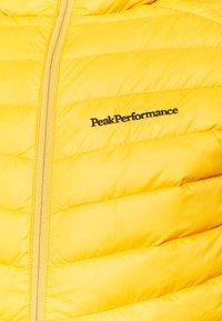 Peak Performance - FROST HOOD JACKET - Bunda zprachového peří - blaze tundra - 2