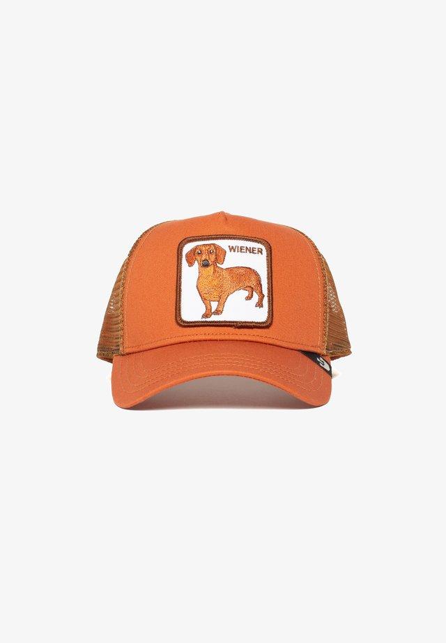 WEINER DAWG - Cap - orange