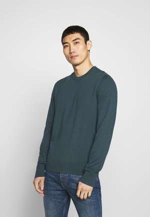 Sweter - fern