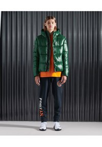 Superdry - Giacca invernale - mid pine - 1