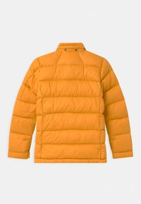 Peak Performance - FROST UNISEX - Down jacket - blazetundra - 2