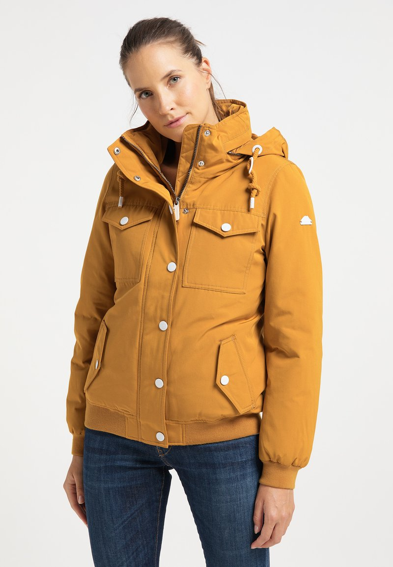 ICEBOUND - Winter jacket - senf