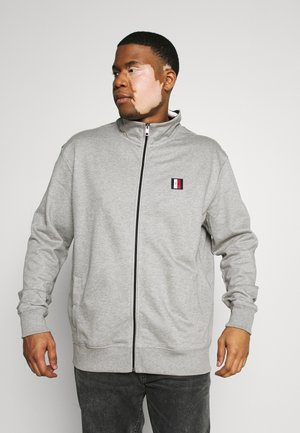 GLOBAL STRIPE ZIP THROUGH - Zip-up hoodie - grey