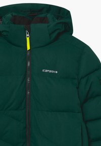Icepeak - LOUDON UNISEX - Snowboard jacket - antique green - 3