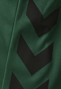 Hummel - DUO SET - Sports shorts - evergreen/black - 5