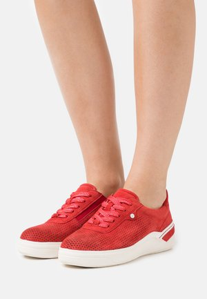 LACE UP - Sneakers laag - sangria