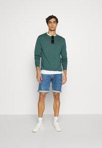 Tommy Hilfiger - CREW NECK - Sweter - green - 1