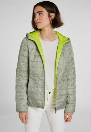WENDEN - Light jacket - green