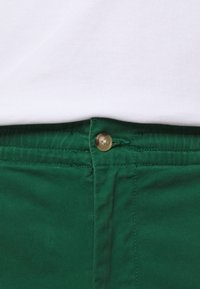 Polo Ralph Lauren - CLASSIC FIT PREPSTER - Shorts - new forest - 4