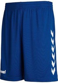 Hummel - Sports shorts - true blue pro - 2