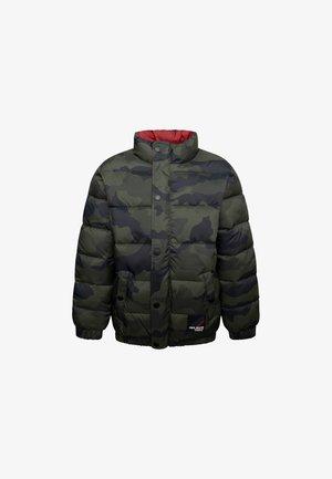 MORRIS - Winter jacket - green