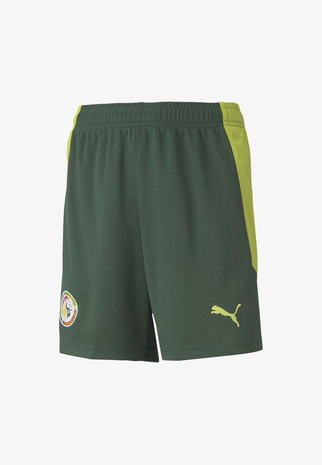 SENEGAL AWAY REPLICA - Sports shorts - dark green-limepunch