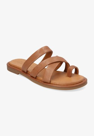 CAIRO - Sandalias de dedo - marrón