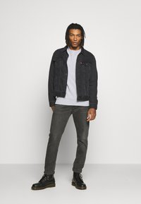 The North Face - RAGLAN BOX CREW - Collegepaita - light grey - 1