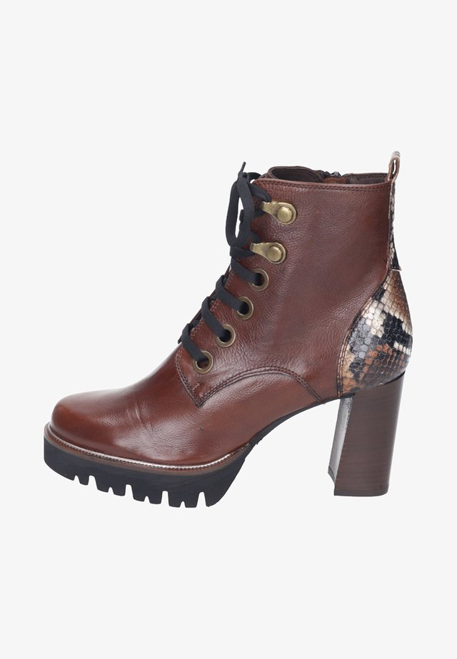 Lace-up ankle boots - cognac/rovere