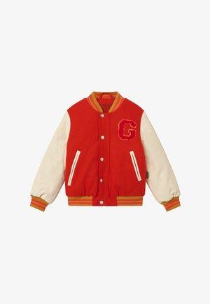 STALLION UNISEX - Winter jacket - spicy red