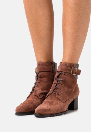 Lace-up ankle boots - cognac/etoile libra