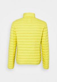 Colmar Originals - MENS JACKETS - Down jacket - yellow - 7