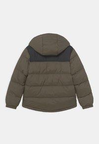 Timberland - PUFFER - Winter jacket - khaki - 1