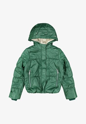 Winter jacket - forest
