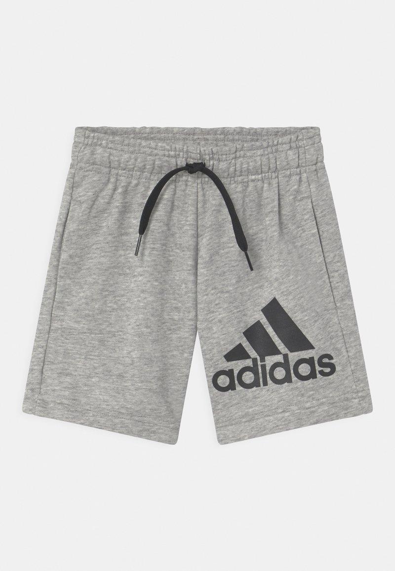 adidas Performance - UNISEX - Sports shorts - grey/black