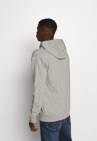 Tommy Jeans - CLASSICS ZIPTHROUGH - veste en sweat zippée - grey - 2