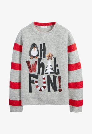 FAMILY OH WHAT FUN - Jumper - grey