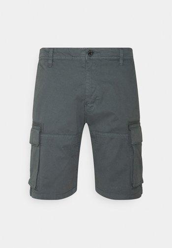 CARGO - Shorts - grey