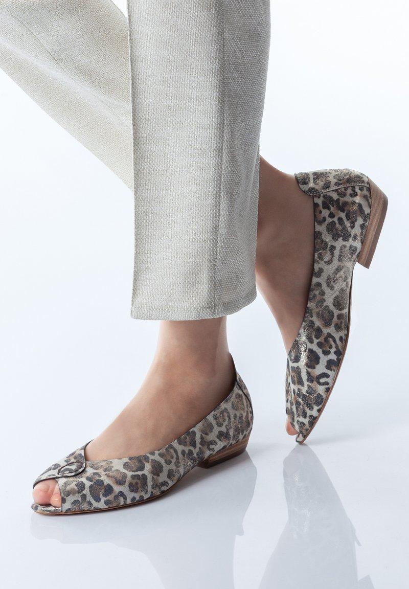 TJ Collection - Ballet pumps - beige