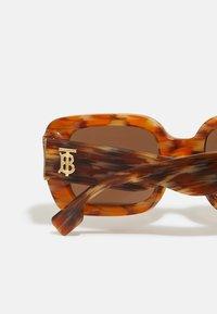 Burberry - Aurinkolasit - brown - 2