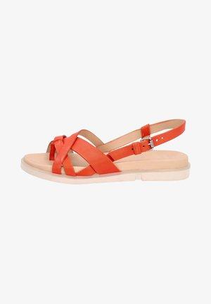 Sandals - zucca