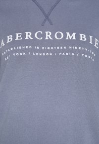 Abercrombie & Fitch - LOGO POPOVER - Hoodie - blue - 6