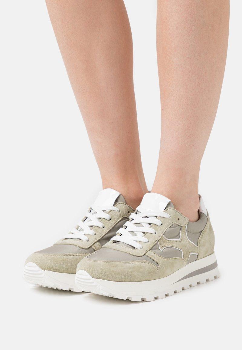 Peter Kaiser - FELIPA - Sneakers laag - yucca/weiß