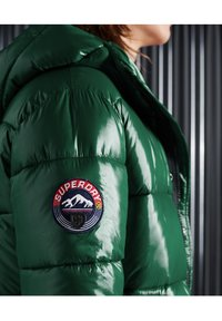 Superdry - Giacca invernale - mid pine - 3