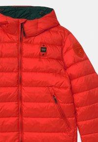 Blauer - GIUBBINI CORTI IMBOTTITO OVATTA - Zimní bunda - orange - 2