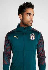 Puma - ITALIEN FIGC STADIUM THIRD JACKET - Træningsjakker - ponderosa pine/cordovan - 3