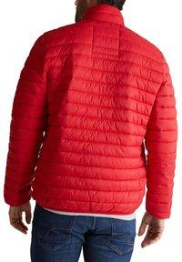 Esprit - RECTHINS  - Winter jacket - red - 4