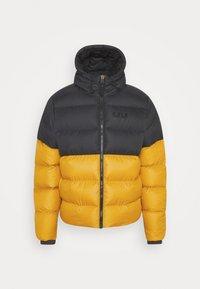 ACTIVE PUFFY JACKET - Winter jacket - arrowwood