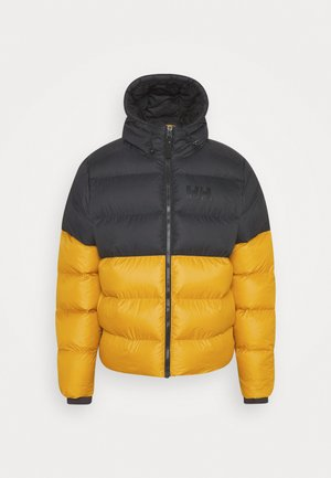 ACTIVE PUFFY JACKET - Winter jacket - arrowwood