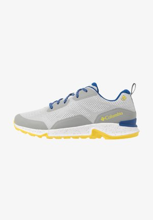 VITESSE OUTDRY - Hiking shoes - slate grey/zour
