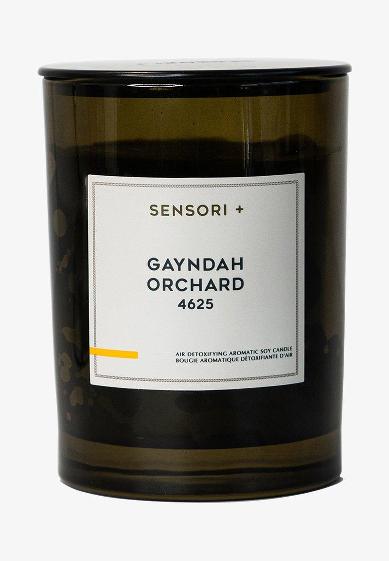 SENSORI+ - GAYNDAH ORCHARD 4625 - Scented candle - -