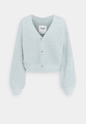 CHENILLE CORE LENGTH CARDI - Cardigan - puritan grey