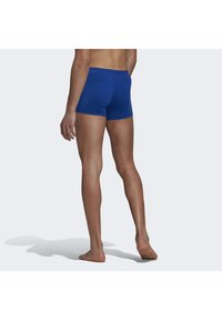 adidas Performance - PRO SOLID SWIM BOXERS - Bañador - blue - 1