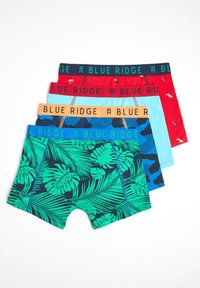 WE Fashion - 4 PACK - Pants - multi coloured - 1