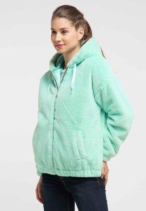 Winter jacket - mint