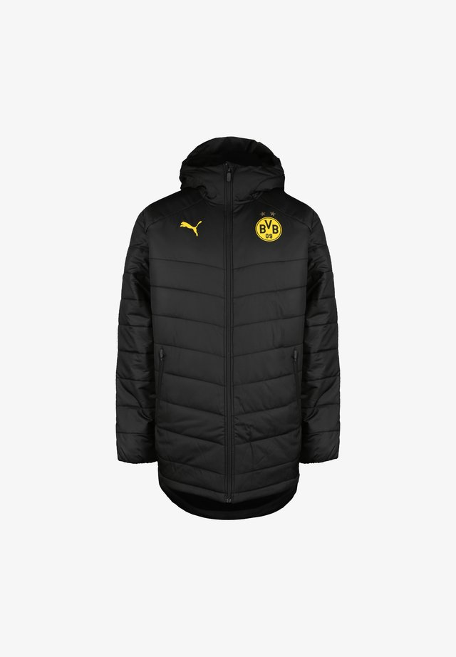BORUSSIA DORTMUND BENCH  - Winterjacke -  black / cyber yellow