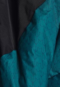 edc by Esprit - Winter jacket - dark teal green - 8