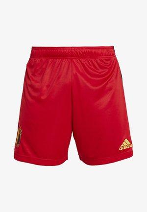 BELGIUM RBFA HOME SHORTS - Pantalón corto de deporte - red
