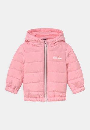 STARS UNISEX - Winter jacket - light pink