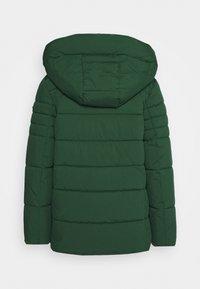 Esprit - Winter jacket - dark green - 1
